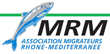 logo-MRM